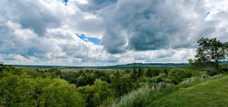 Vista panoramica sulla foresta dalla cima della collina fotografia stock libera da diritti