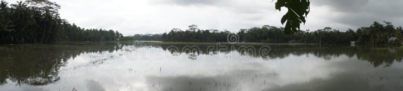 Vista panoramica sulla parte piana dell'isola di Java Indonesia fotografia stock