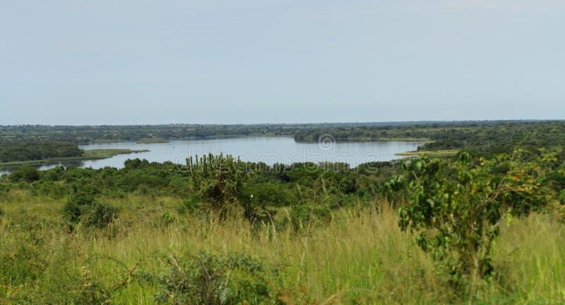 Vista para fora sobre o Nile River em Uganda imagem de stock royalty free