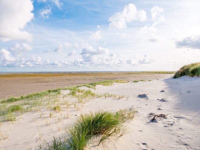 Vista para lixar na maré baixa planos do mar de Wadden da praia do natur foto de stock