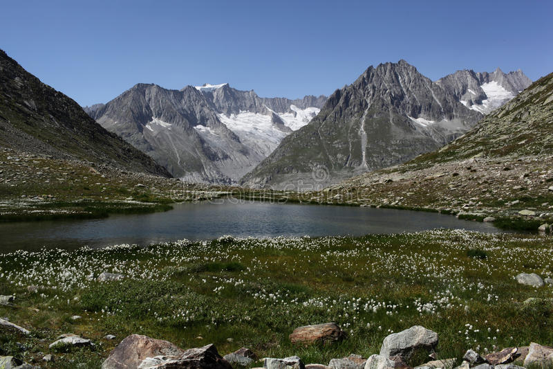 Vista para montanhas perto da geleira de Aletsch fotos de stock
