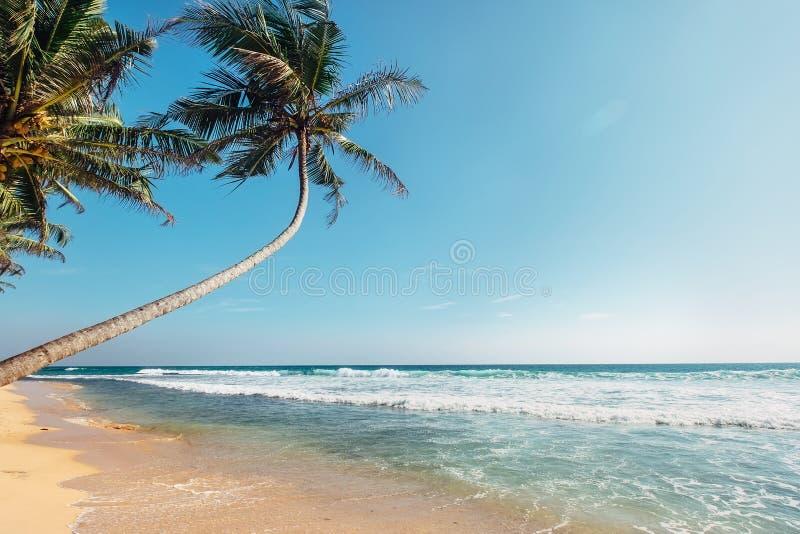 Vista para o mar clássica arenosa branca de opinião da praia tropical da ilha foto de stock