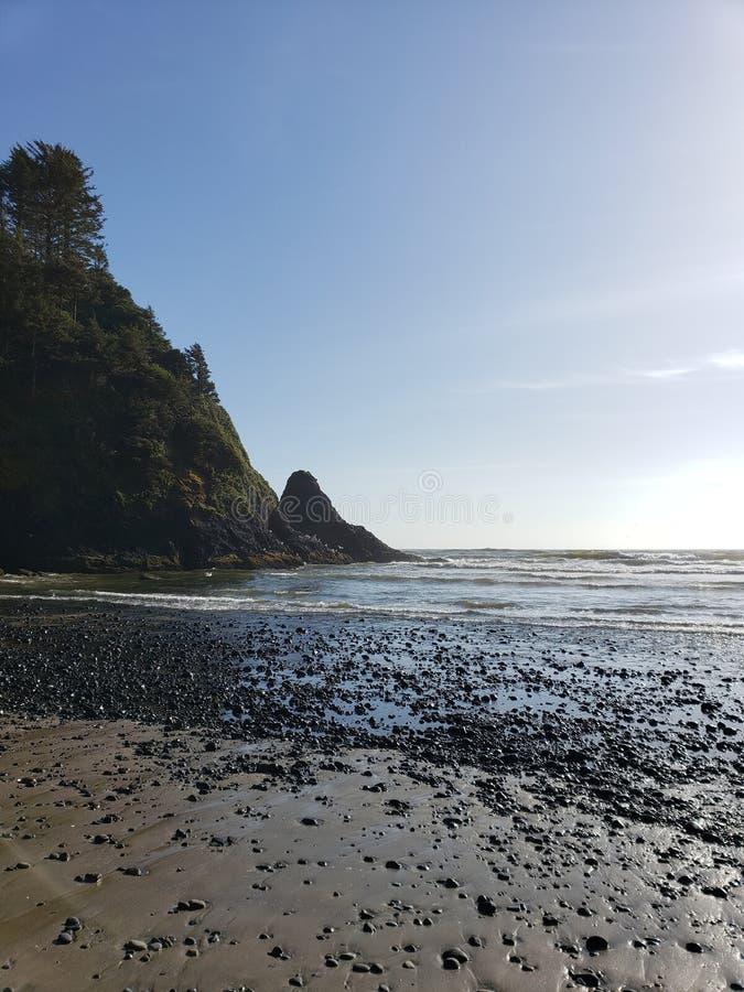 Vista para o mar da costa de Oregon com penhasco fotografia de stock royalty free