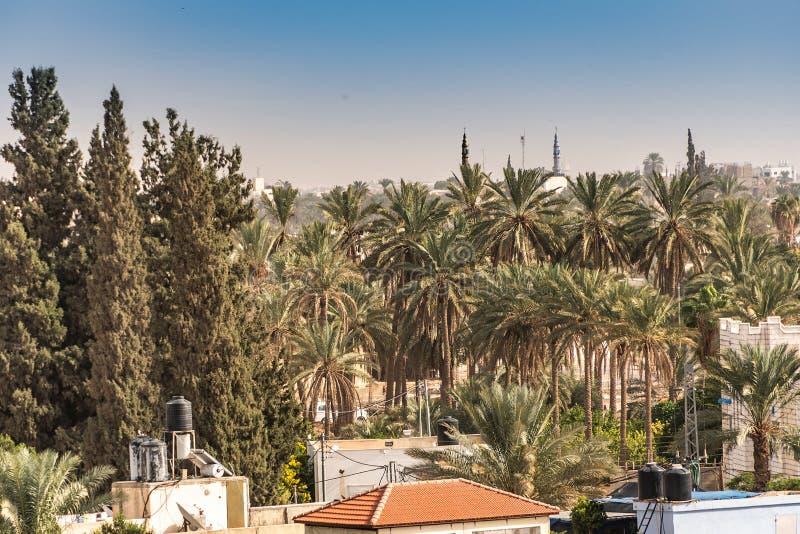 Vista parcial de la ciudad de Jericó en Jordan Valley Palestino Cisjordania fotografía de archivo libre de regalías