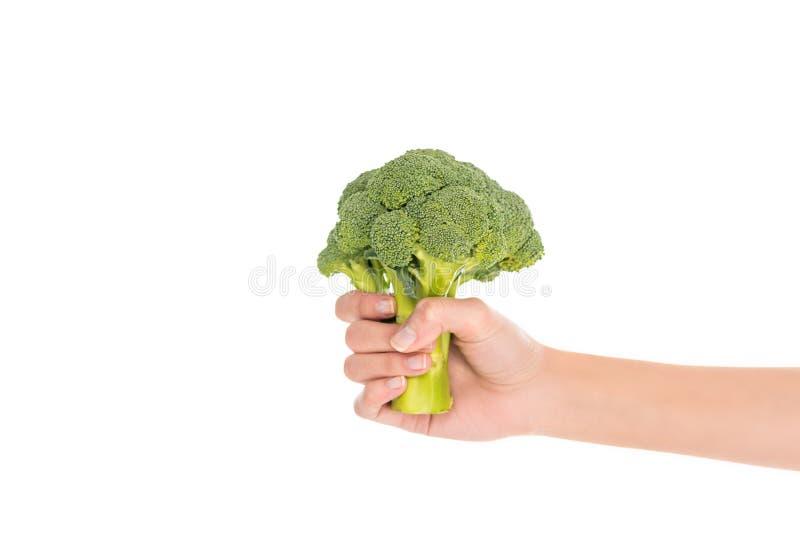 vista parziale del primo piano della mano femminile che tiene i broccoli organici freschi fotografia stock