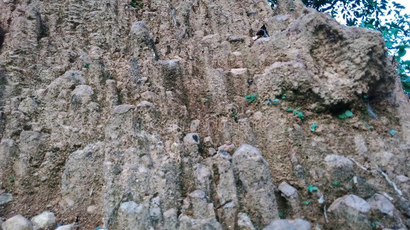 Vista pequena da parede das rochas pequenas fotografia de stock