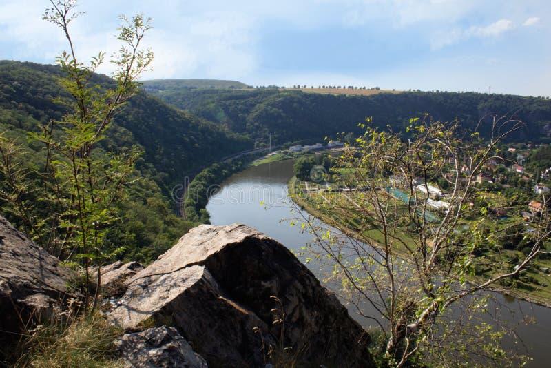 Vista piacevole dalla collina Rivnac al meandro della Moldava con l'albero di betulla immagine stock