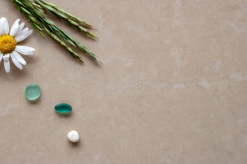 Vista piana minimalism Ci sono una margherita e le paia dei pezzi di vetro colorati, con le spighette verdi che attaccano dall'an immagini stock libere da diritti
