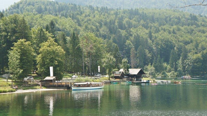 Vista pitoresca do lago Bohinj, de montanhas de Julian Alps e de vale, Eslovênia imagem de stock