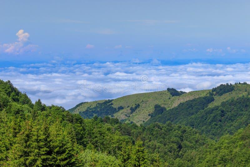 Vista pitoresca dos montes verdes, do céu azul e das nuvens grossas foto de stock