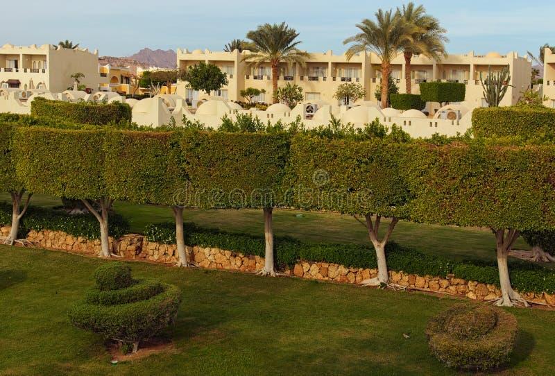 Vista pittoresca di mattina della costruzione tropicale della località di soggiorno dell'albergo di lusso con le palme ed i cespu immagine stock libera da diritti
