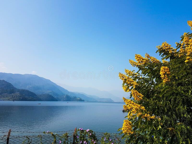 Vista pittoresca sul lago Phewa in Pokhara, Nepal mattina piena di sole fotografia stock libera da diritti