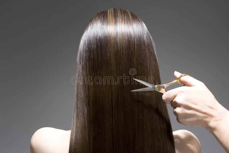 Vista posterior de la mujer que tiene corte de pelo imagenes de archivo