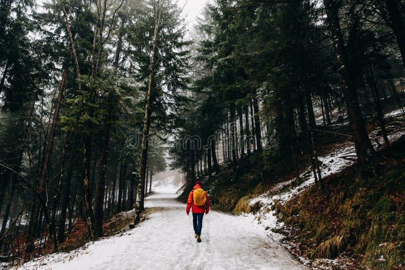 vista posterior de la persona que camina en montaña hermosa del invierno fotografía de archivo