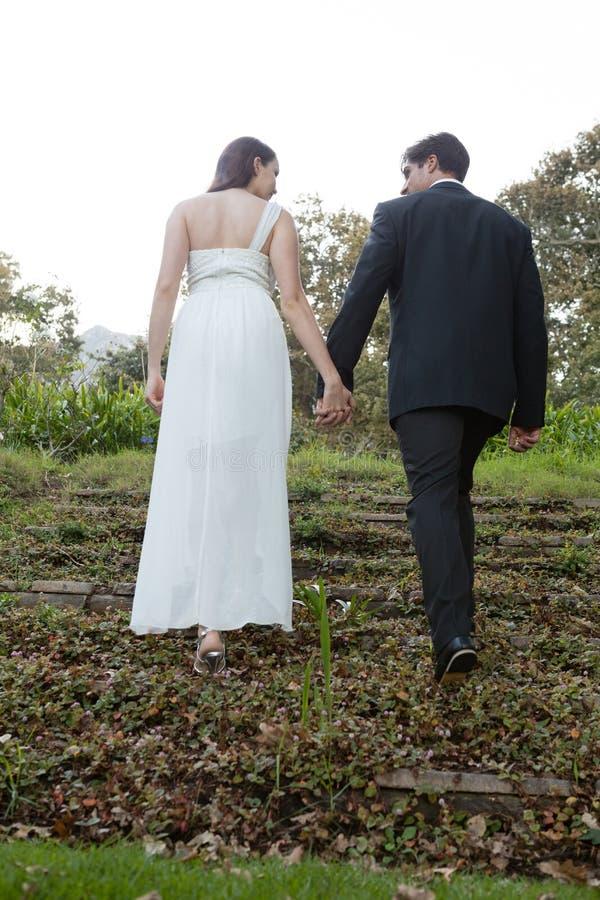 Vista posterior de los pares que llevan a cabo las manos y que caminan en campo herboso fotografía de archivo