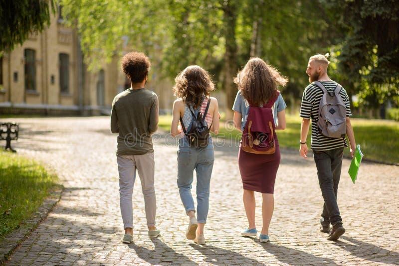 Vista posterior en el grupo de estudiantes que van junto a la universidad fotos de archivo libres de regalías