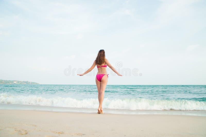 Vista posteriore di sexy, giovane signora nel fascino del bikini rosa che entra in mare ondulato in Tailandia fotografia stock libera da diritti
