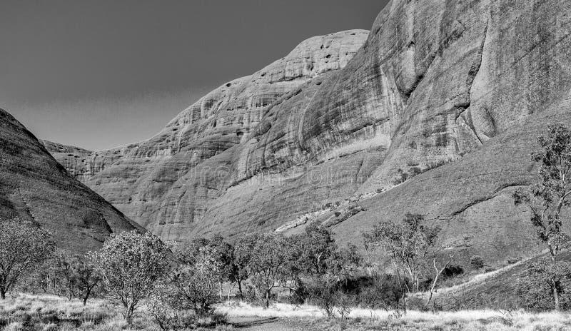 Vista preto e branco do parque do interior do Território do Norte, Austral fotos de stock