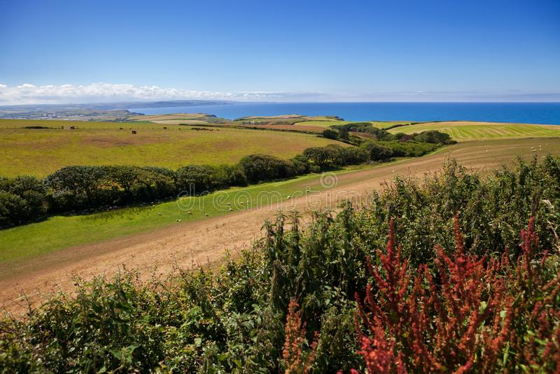 Vista que negligencia a costa norte de Cornualha, com o Bude na distância imagem de stock royalty free