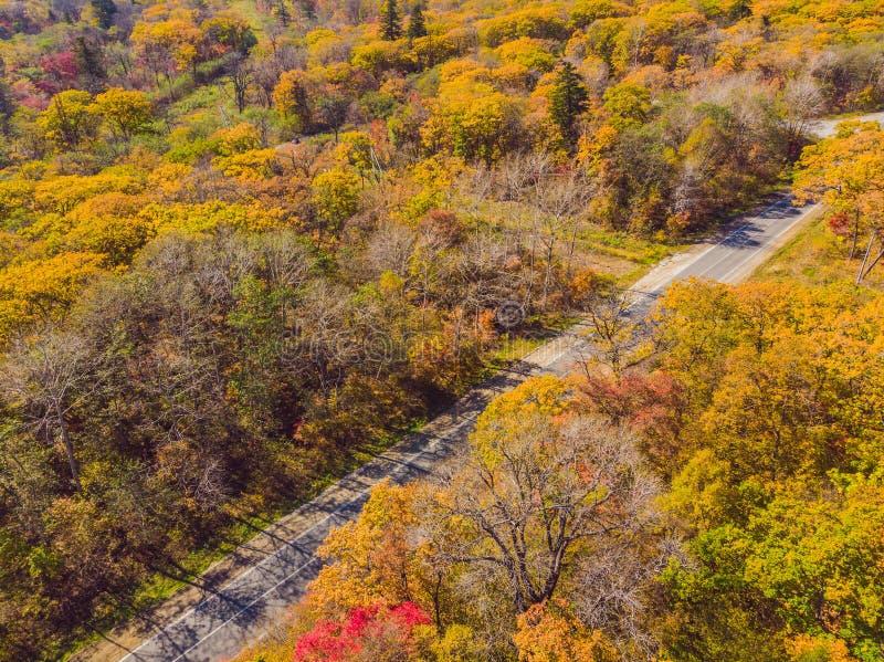 Vista a?rea del camino en bosque hermoso del oto?o en la puesta del sol Paisaje hermoso con el camino rural vac?o, ?rboles con ro foto de archivo