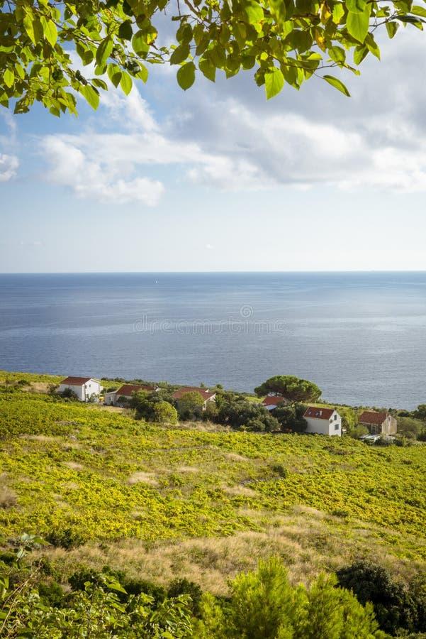 Vista regional no litoral perto de Orebic, Croácia fotografia de stock royalty free