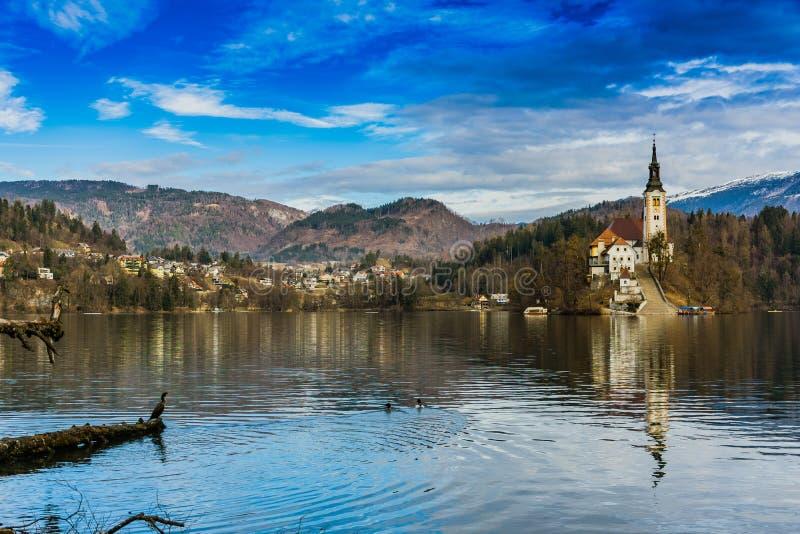 Vista sangrada lago da igreja imagem de stock royalty free