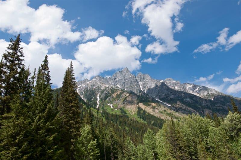 Vista scenica dei picchi nevosi e della foresta sempreverde, Rogers Pass National Historic Site del Canada immagini stock