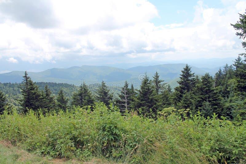 Vista scenica di Great Smoky Mountains fotografia stock