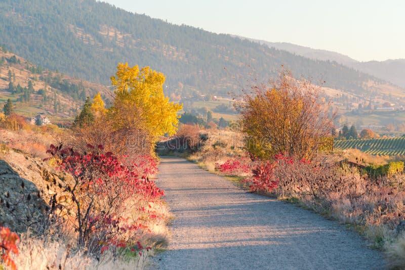 Vista scenica di tramonto della traccia della ferrovia della valle del bollitore ad ottobre immagini stock