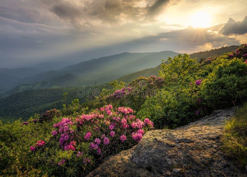 Vista scenica, Roan Highlands, Tennessee immagine stock