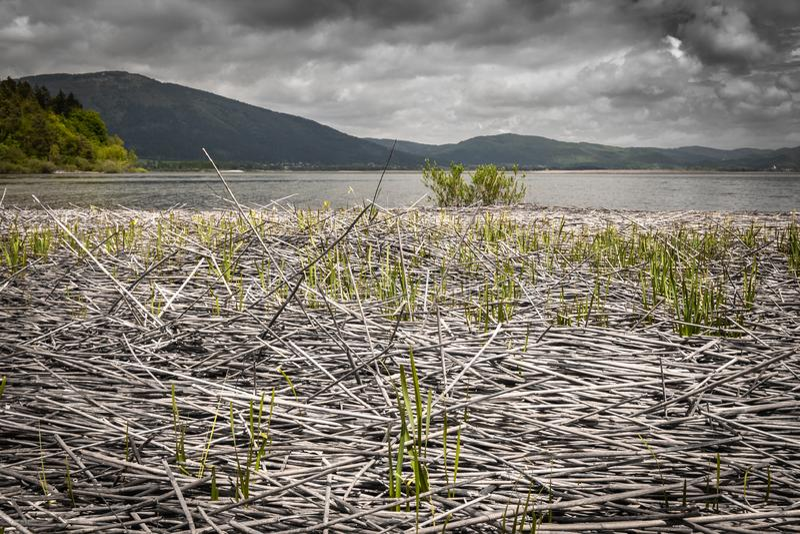 Vista scenica sul bello cerknica intermittente del lago, con acqua, stagione primaverile, Slovenia immagine stock