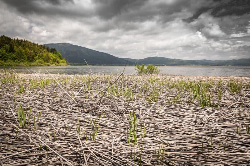 Vista scenica sul bello cerknica intermittente del lago, con acqua, stagione primaverile, Slovenia fotografia stock