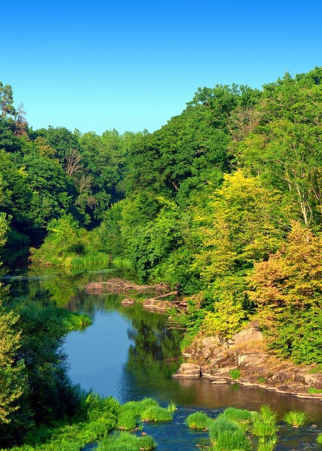 Vista selvaggia con il fiume fotografia stock