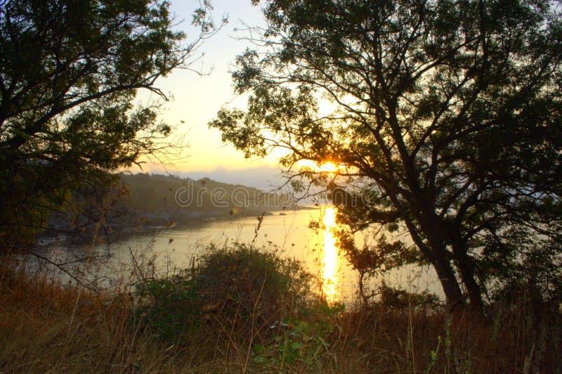 Vista selvaggia di alba della spiaggia fotografie stock libere da diritti