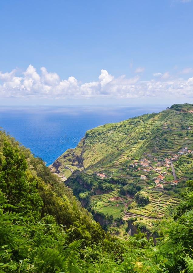 Vista sobre campos e terraços originais em Madeira fotos de stock