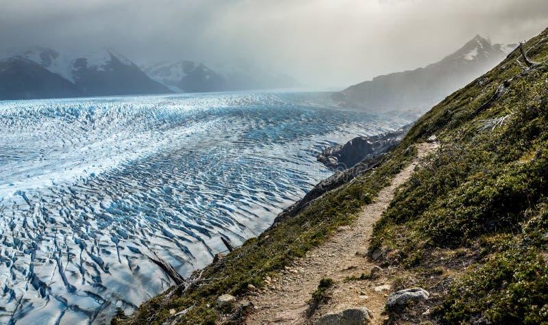 Vista sobre Grey Glacier no parque nacional de Torres del Paine no Chile imagens de stock