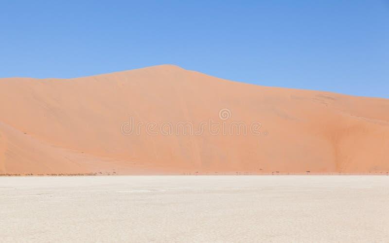 Vista sobre o deadvlei com as dunas vermelhas famosas do deserto de Namib imagens de stock royalty free