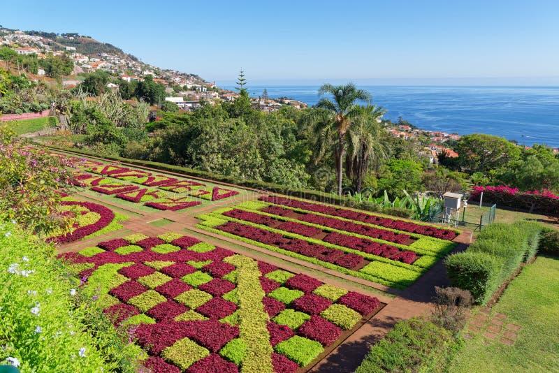 Vista sobre o jardim de Jardim Botanico na ilha de Madeira imagens de stock