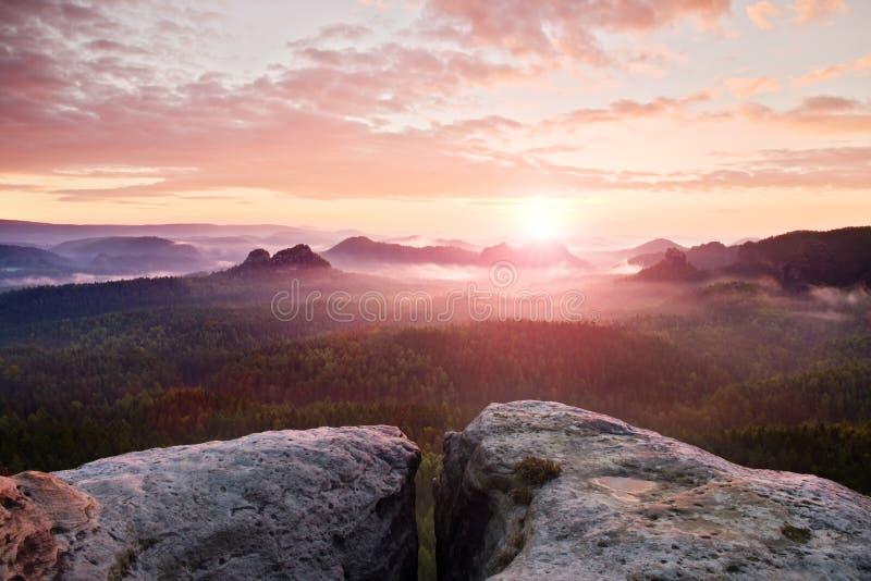 Vista sobre o penhasco do arenito no vale enevoado profundo em Suíça de Saxony Picos do arenito aumentados do fundo nevoento pesa fotografia de stock