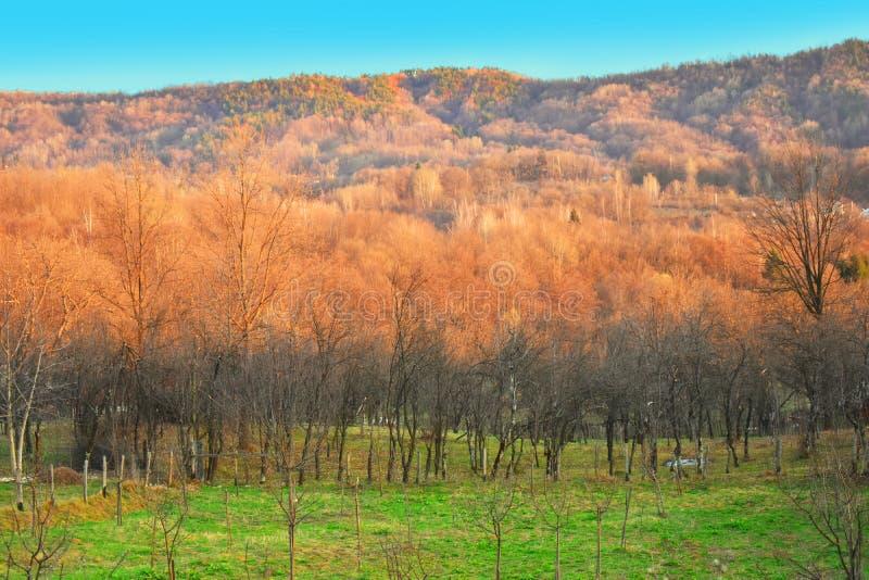 Vista sobre o vale e os montes em um dia de mola ensolarado Paisagem do pa?s imagem de stock