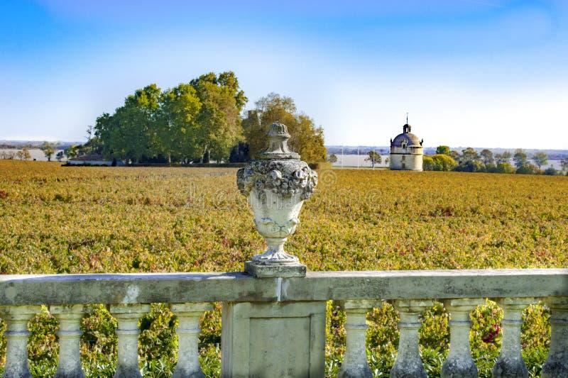 Vista sobre o vinhedo ao castelo Latour no Bordéus, França fotografia de stock