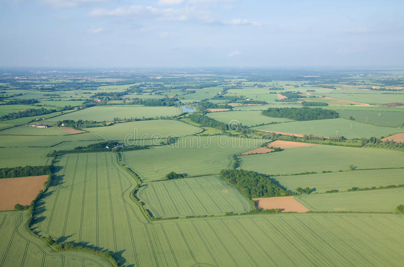 Vista sobre os campos do verde do início do verão imagem de stock