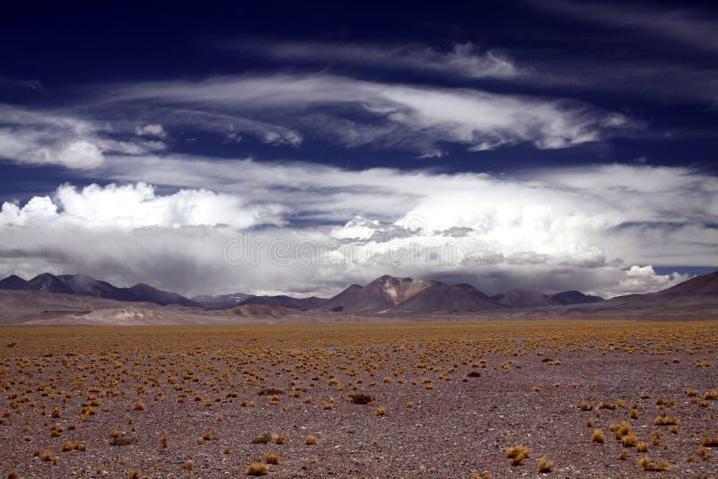 Vista sobre a planície infinita seca estéril pontilhada com os topetes de gras secados e da cordilheira borrada no horizonte foto de stock