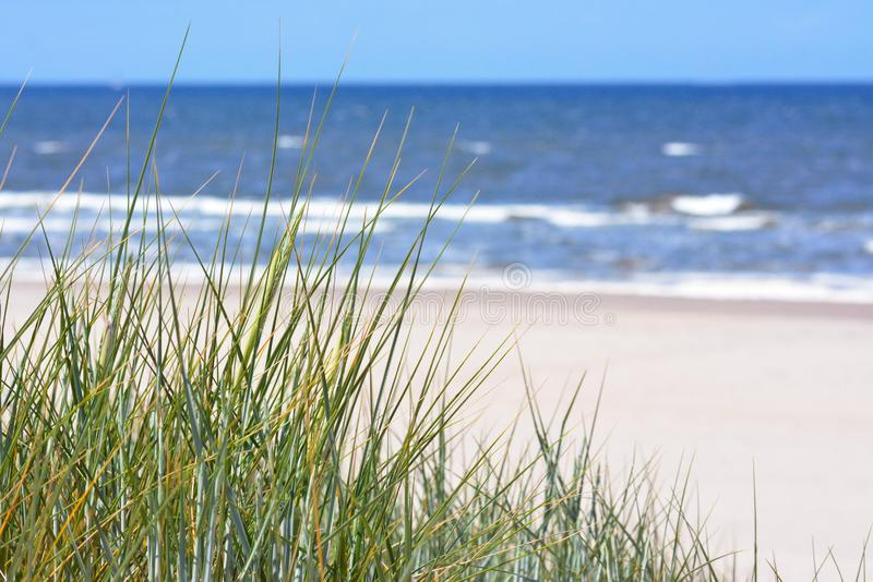 Vista sobre a praia e o oceano brancos bonitos da areia com o céu azul das dunas de areia com grama fotografia de stock royalty free