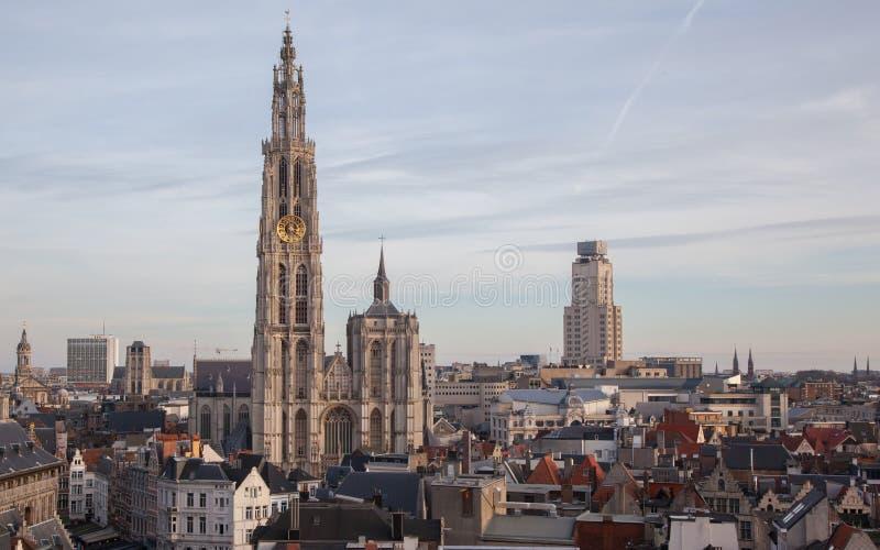 Vista sopra Anversa con la cattedrale della nostra signora immagine stock libera da diritti