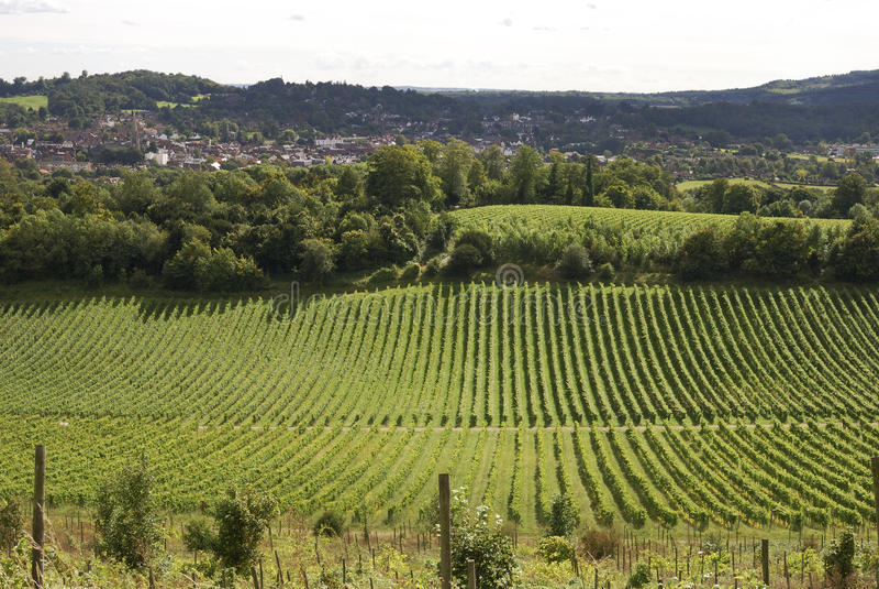 Vista sopra Dorking. Surrey. L'Inghilterra fotografia stock libera da diritti