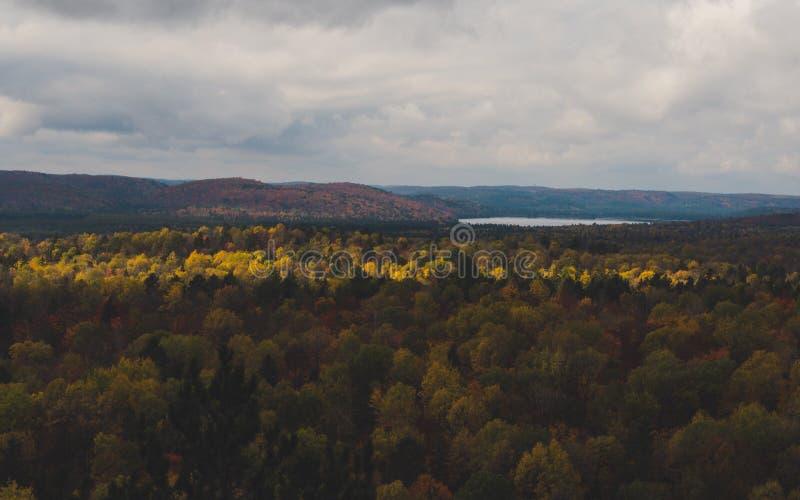 Vista sopra la foresta ed il lago di caduta con gli alberi variopinti da sopra nel parco del Algonquin, Canada fotografia stock libera da diritti