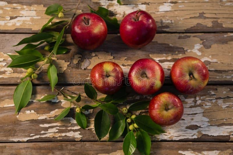 Vista sopraelevata delle mele immagini stock libere da diritti