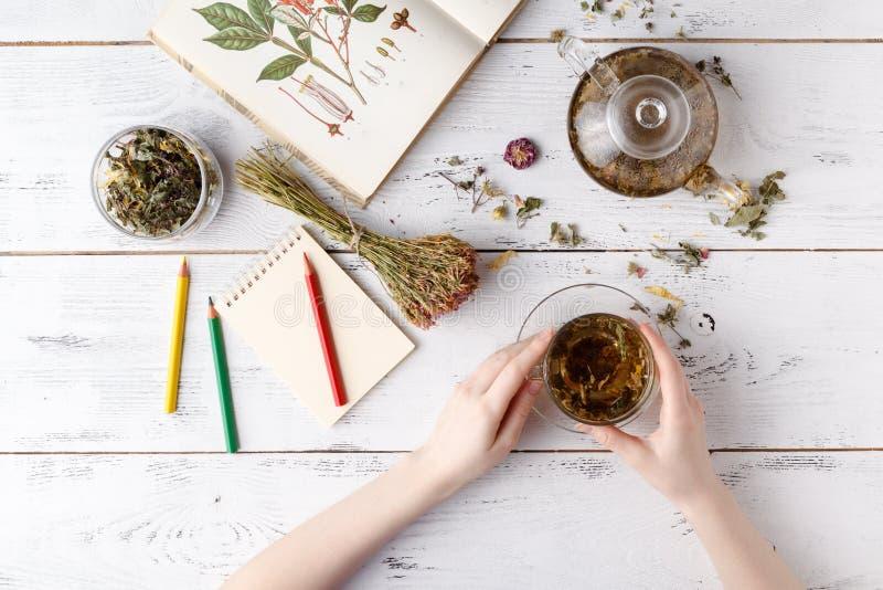 Vista sopraelevata di varie specie di tè Condito con le erbe assortite, una mela, è aumentato con una teiera e un tazza da the su fotografie stock libere da diritti