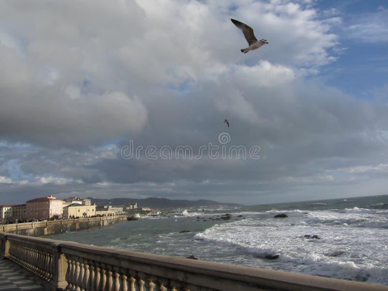 Vista spettacolare del terrazzo di Mascagni in un giorno nuvoloso durante l'inverno Livorno, Toscana - Italia immagini stock libere da diritti
